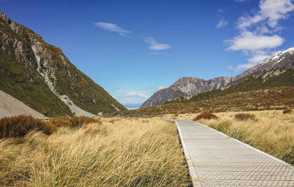 Graslandschaft Wanderung Mt Cook
