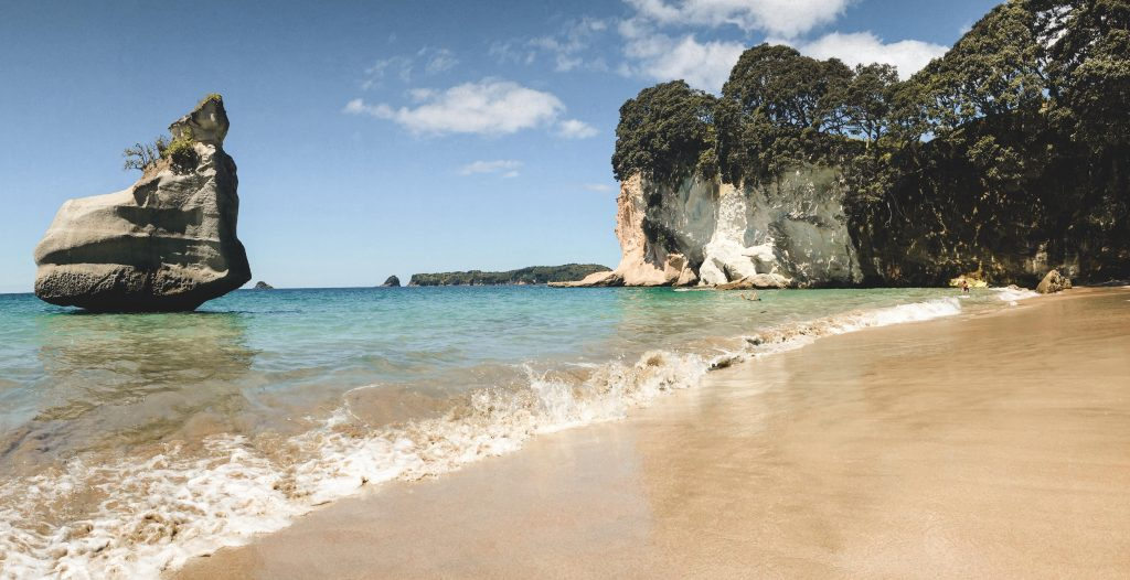 Cathedral Cove Cormandel Highlight