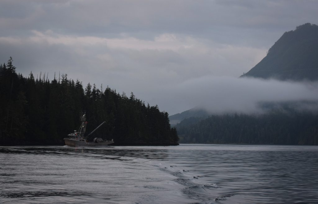 Fischerboot vor Telegraph Cove