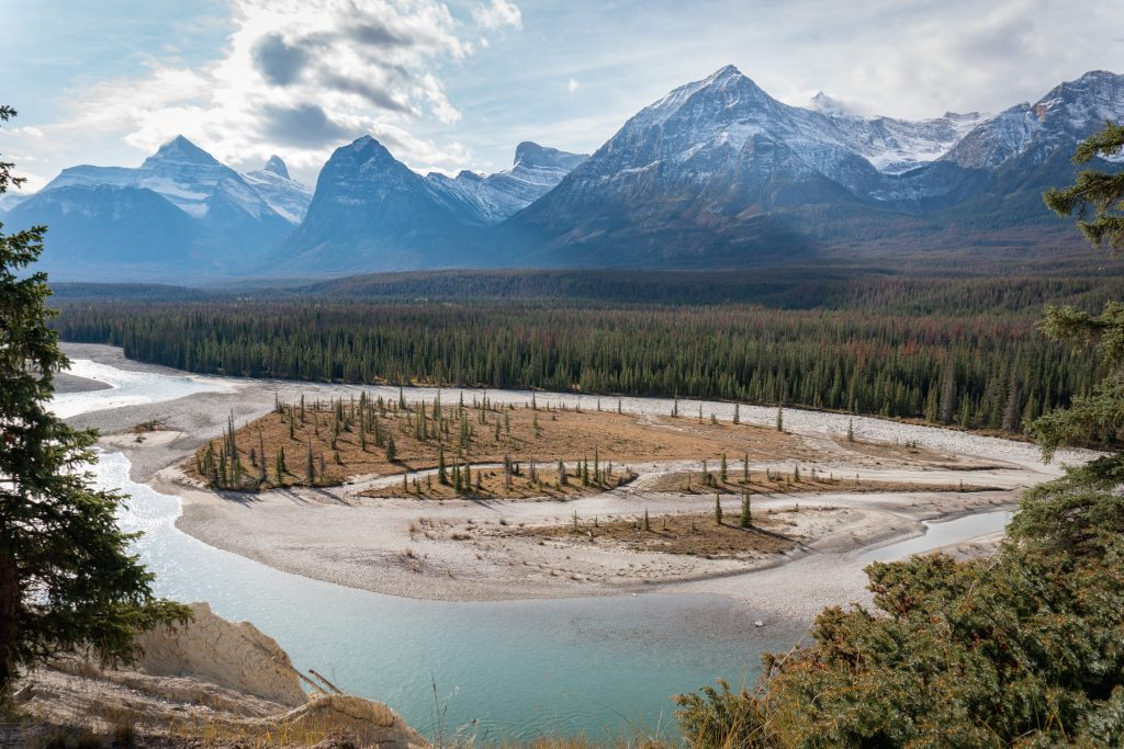 Glaciers and Goats Lookout Icefields Parkway Jasper Nationalpark