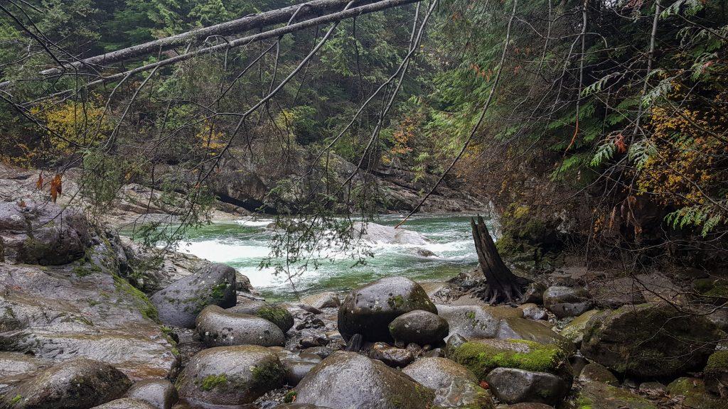 Golden Creek