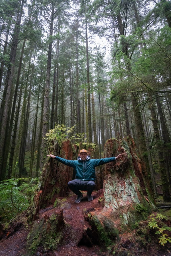 Golden Ears Provincial Park Regenwald