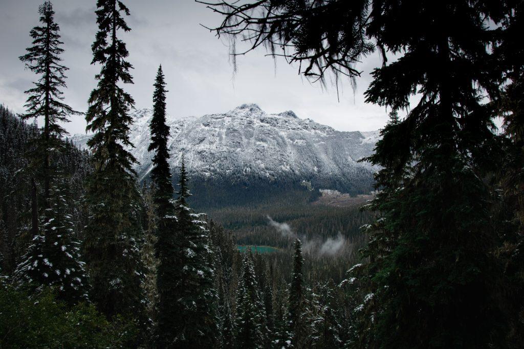 Joffre Lakes Provincial Park Blick auf Lower Lake