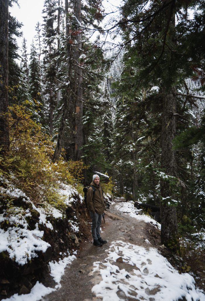 Joffre Lakes Provincial Park Waldweg
