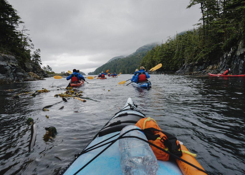 Kajaken Johnstone Strait