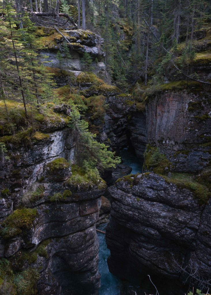 Maligne Canyon View