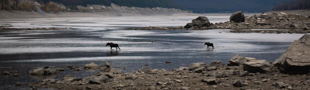 Highlights Jasper Nationalpark