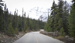 Mount Edith Cavell Road