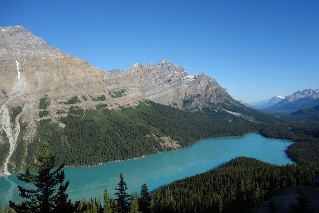 Peyto Lake Banff Nationalpark
