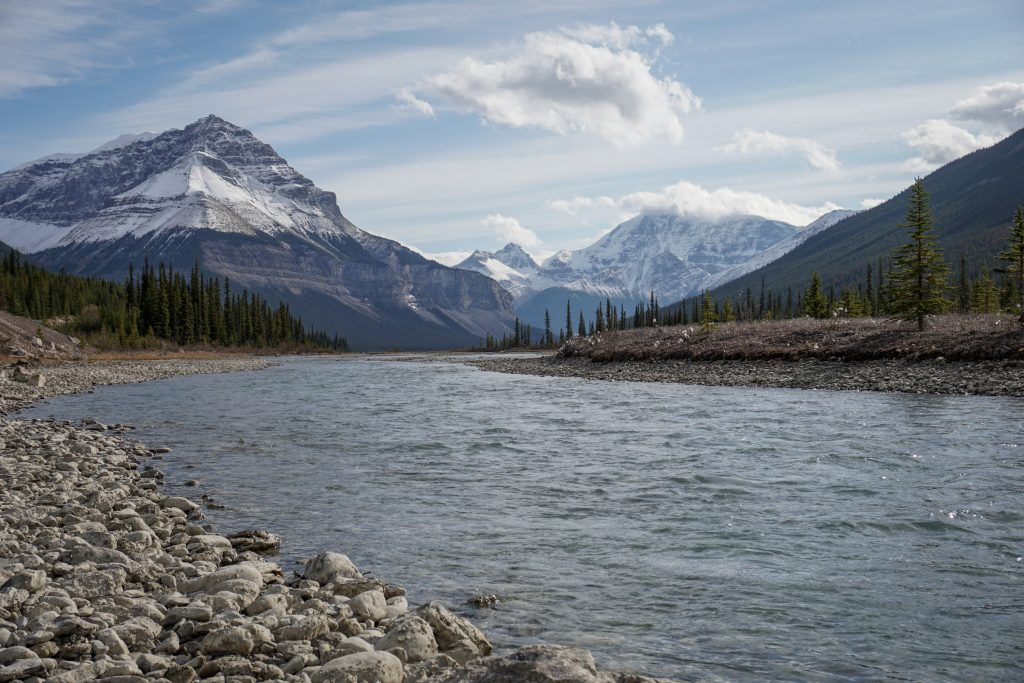 Stutfield Lookout Icefields Parkway