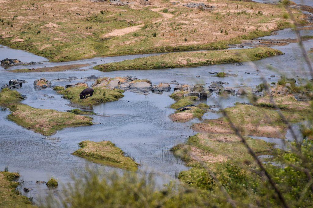 Olifants River Olifants Rest Camp Terasse Aussicht