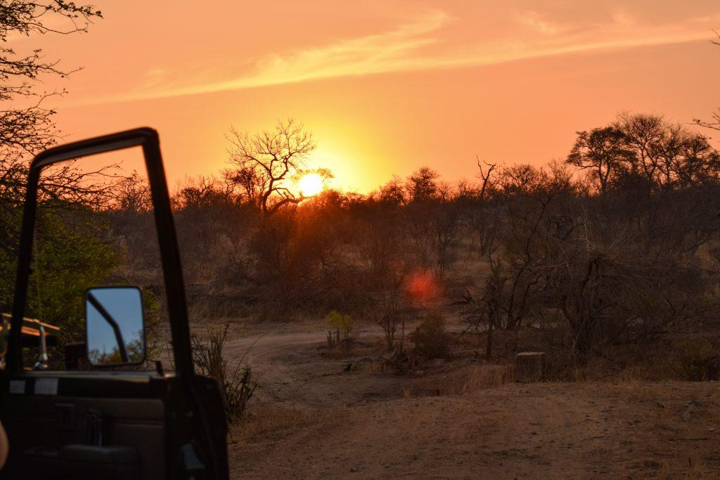 Sunset Drive Satara Rest Camp Krüger Nationalpark