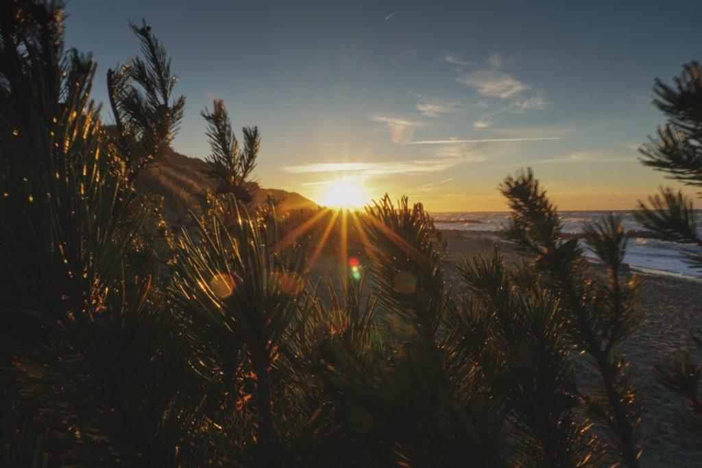 Sonnenuntergangskiosk Gammel Skagen Highlight Norddänemark