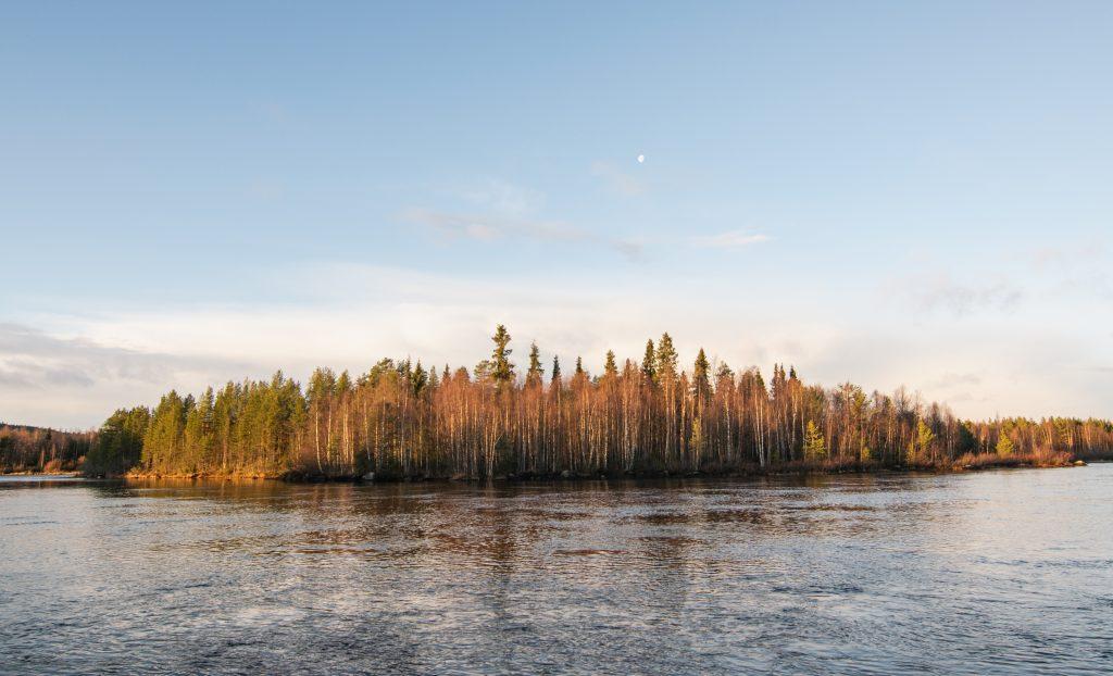 Natur Schweden Lappland 4