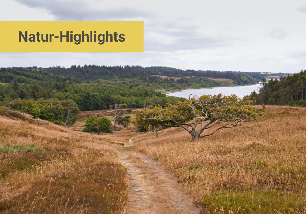 Dänemark Natur Highlights