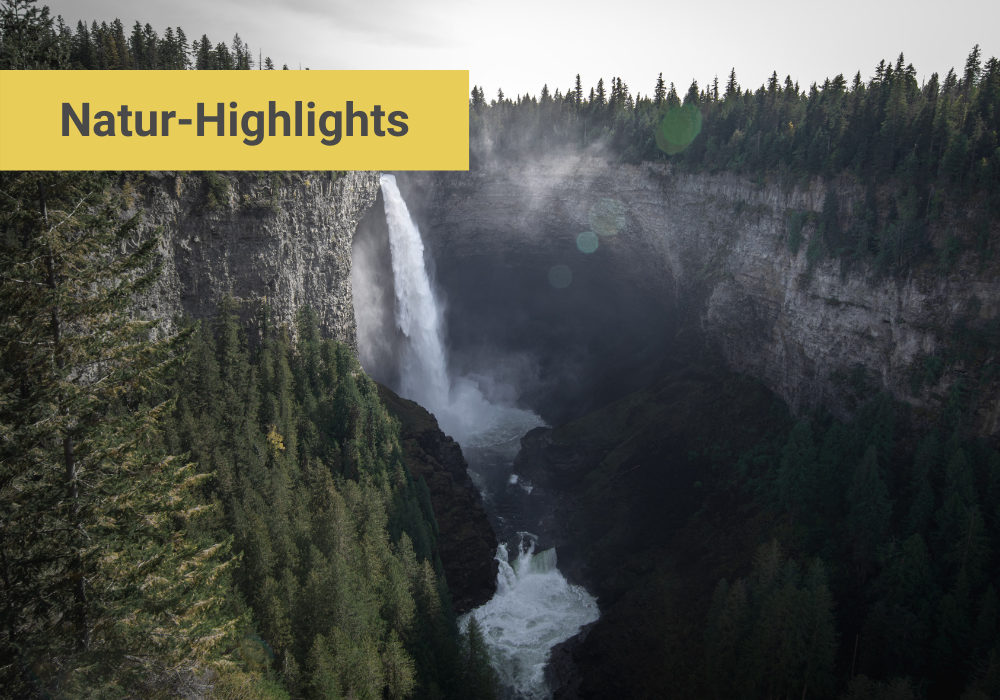 Kanada Natur Highlights