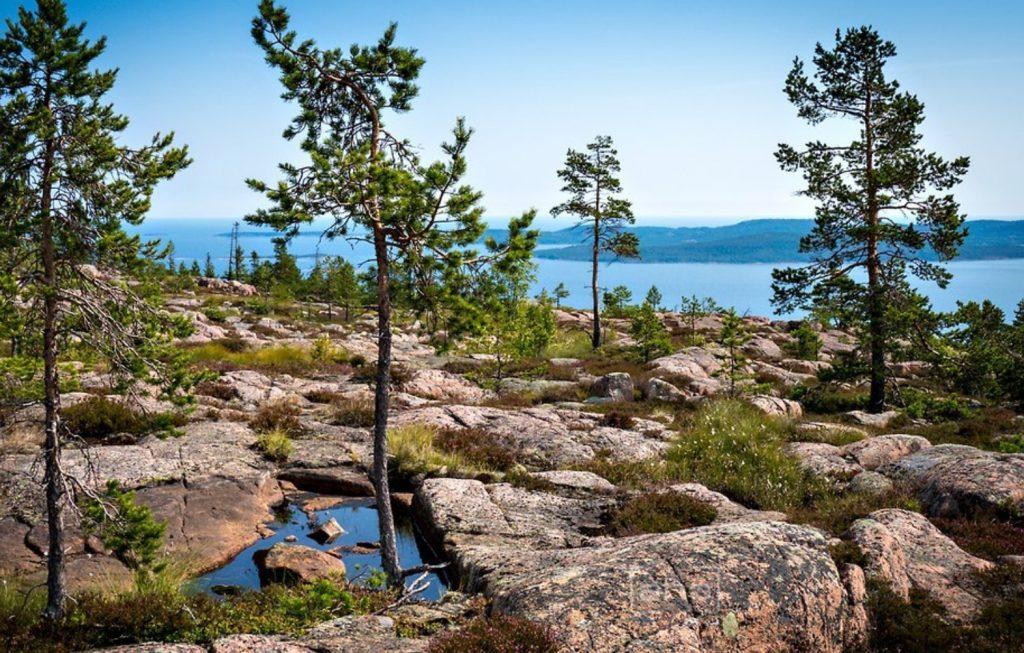Nationalparks in Schweden Skuleskogen Ausblick